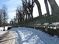 Гатчина Ограда собственного садика зимой.JPG