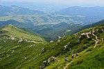 Гірські стежки.jpg