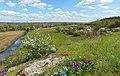 Долина річки Верхня Хортиця. Урочище Вирва.jpg