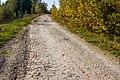 Дорога на Горки - panoramio.jpg