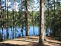ЗЕЛЕНОГОРСК - Дружинное(Чёртово) озеро (3).jpg