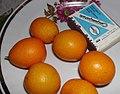 Кумкват (Citrus japonica) 01.jpg
