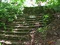 Лестница в парк.JPG