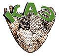 Логотип КАЭ.jpg