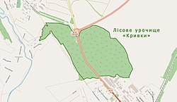 Лісове урочище «Кривки» на мапі