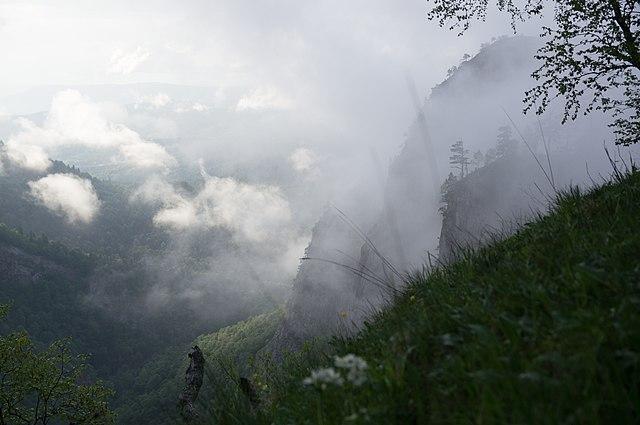Верховья реки Ходзь, место реликтовых и эндемичных видов