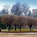Нальчик - panoramio (6).jpg
