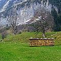 На траве дрова. Grindelwald - panoramio.jpg