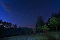Ночь в лесу.jpg