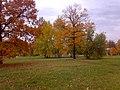 Осень. - panoramio.jpg
