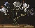 Паоло Порпора П'ять півників, метелик і ящірка 1650.jpg