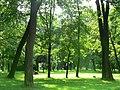 Пейзаж парка Екатерингоф.jpg
