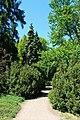 Сирецький дендрологічний парк IMG 7777.jpg
