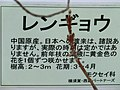 三笠公園 - panoramio (36).jpg