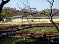山田池公園 - panoramio - pier.piner.jpg