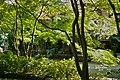 深大寺 - panoramio (5).jpg