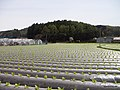 県道6号線 - panoramio (7).jpg