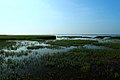 若尔盖花湖-错热洼坚Cuorewajian Lake - panoramio (2).jpg