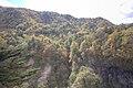 華厳の滝周辺 - panoramio (1).jpg