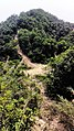 虎门皇帝山20130519 - panoramio (1).jpg