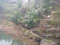 雨中的小溪 - panoramio (1).jpg