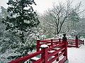 雪舞う弥彦公園 (Snowy Yahiko Park) 07 Jan, 2012 - panoramio.jpg