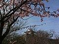 香川県丸亀市丸亀城 - panoramio (53).jpg