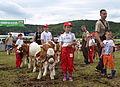 02014. Junge Landwirte aus Beskiden, Rudawka Rymanowska.JPG