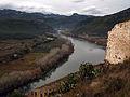 039 L'Ebre des del castell de Miravet.JPG