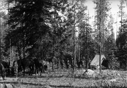 10th Cavalry at Diamond Creek, NM
