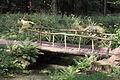 160-OranienbaumHolzbrücke-2816.jpg