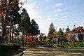 171103 Morioka Castle Morioka Iwate pref Japan19s3.jpg