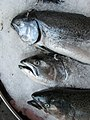 17 Pike Place Market king salmon on sale.jpg