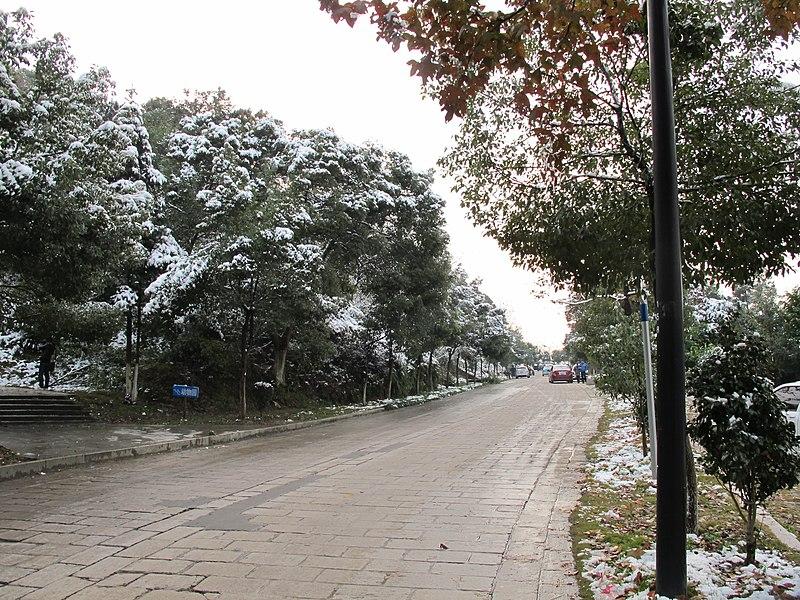 File:2010年12月15日夜里的那场雪 - panoramio (4).jpg