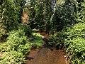 2013-08-17 13 30 01 View up the Shabakunk Creek from the Green Lane Fields pedestrian bridge.jpg