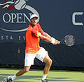 2014 US Open (Tennis) - Tournament - Andreas Haider-Maurer (14915116288).jpg