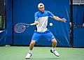 2017 US Open Tennis - Qualifying Rounds - Radu Albot (MDA) (27) def. Frank Dancevic (CAN) (37009255871).jpg