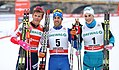 2018-01-13 FIS-Skiweltcup Dresden 2018 (Finale Männer) by Sandro Halank–011.jpg