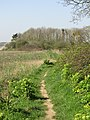 2018-04-20 Footpath near the Parish church of Saint Mary the Virgin, Northrepps, Cromer (1).JPG