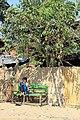 20200213 100901 Mingun, Sagaing-Region, Myanmar anagoria.JPG