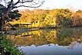 308, Taiwan, 新竹縣寶山鄉油田村 - panoramio (20).jpg