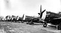 359th Fighter Group P-47 Thunderbolts.jpg
