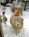 6th Happiness-Alan diGangi-Babydoll Sheep Ram Poppy 001.jpg