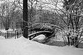 9045vik Park w Pszczynie . Foto Barbara Maliszewska.jpg