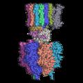 ATP合成酵素.png
