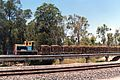 A 610mm gauge sugar cane train runs parallel to the NCL near Mackay.jpg
