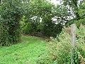 A Bridleway To Saltmarshe Grange - geograph.org.uk - 217788.jpg
