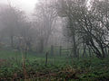 A December view of Woodnook Valley, Little Ponton, Lincolnshire, England 04.JPG