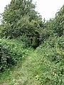 A dark tree lined footpath - geograph.org.uk - 515555.jpg