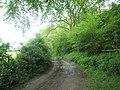 A muddy Old Litten Lane - geograph.org.uk - 1324349.jpg